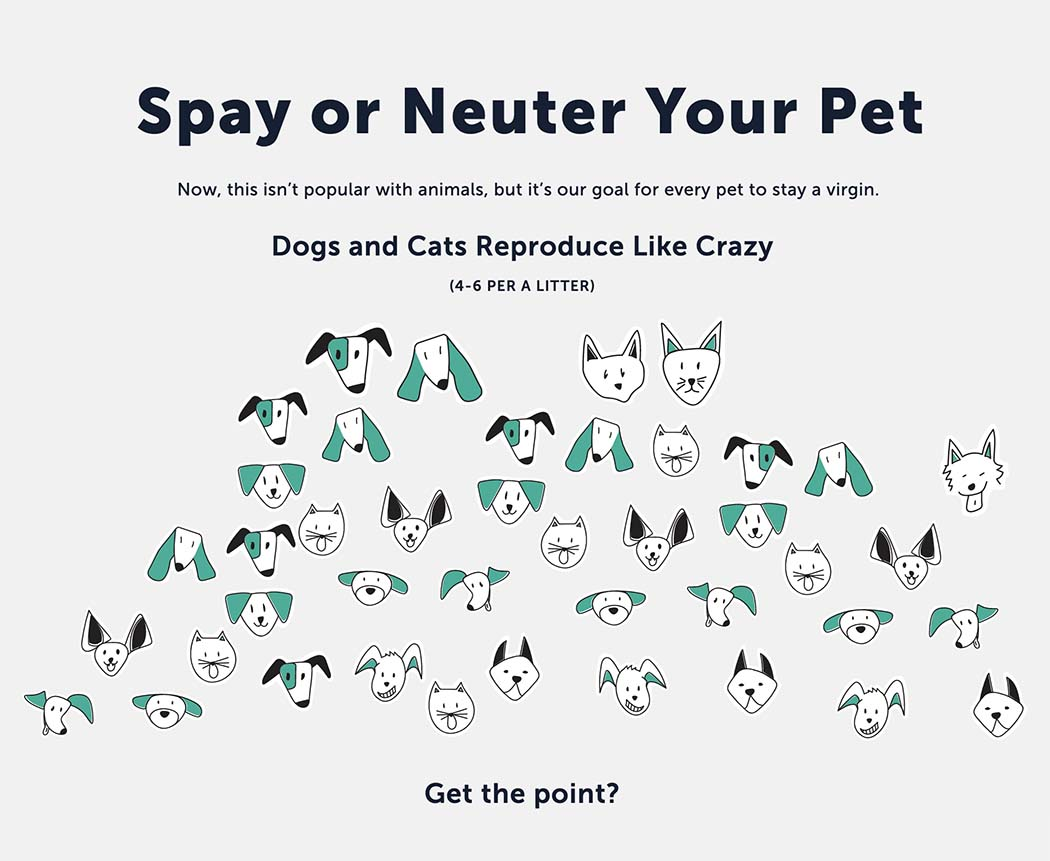 spay neuter graphic 1