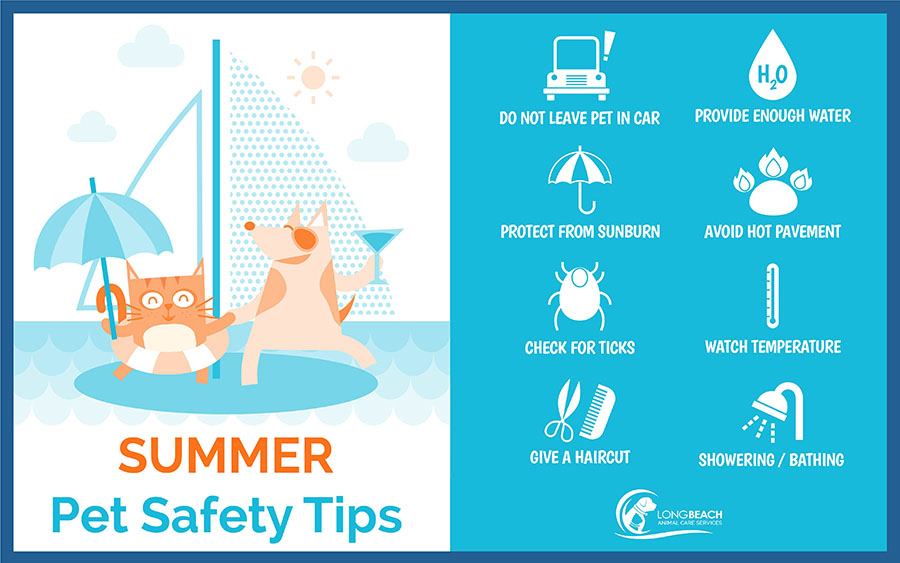 summer pet safety tips infographic_new logo