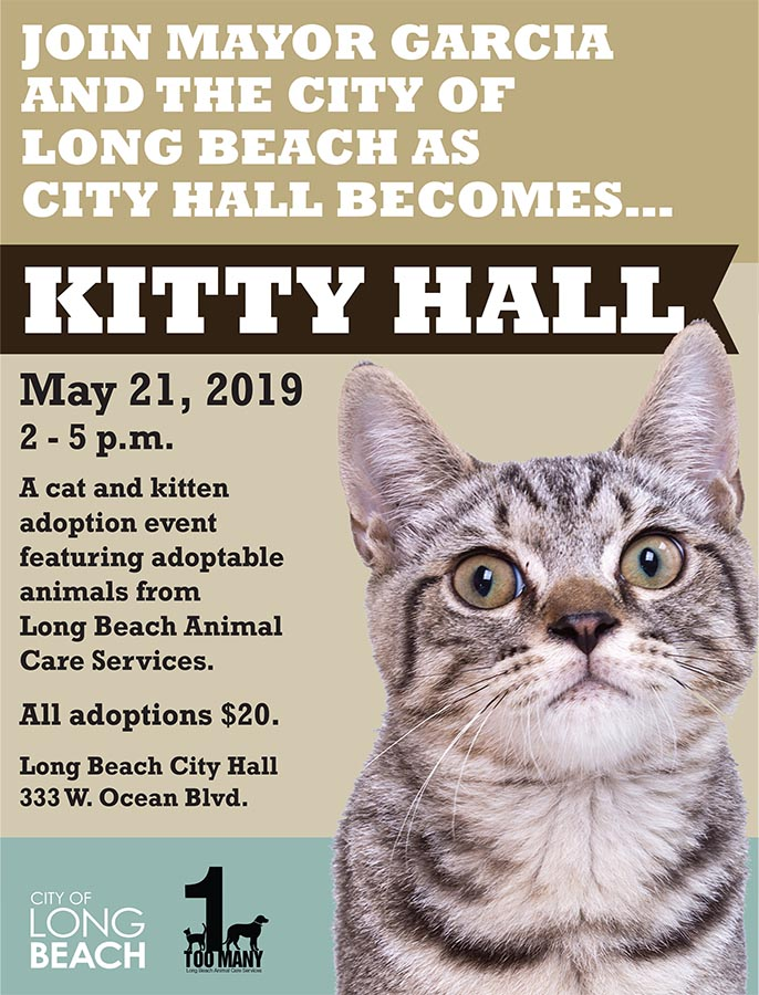 Kitty Hall Flyer 2019_lo-res