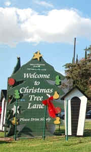 Daisy Avenue Christmas Tree Lane Welcome Sign, No Link Attached
