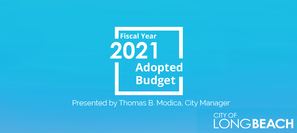 Use BudgetLB to explore the Fiscal Year 2021 Adopted Budget